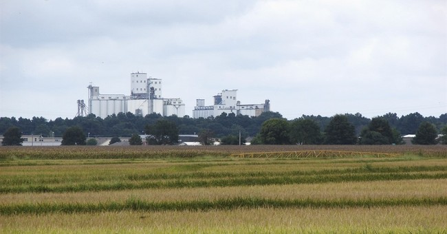 Flooding in South puts a damper on US rice harvest