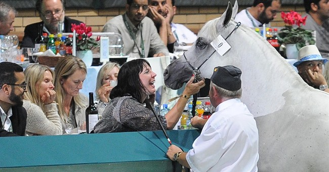 Mysterious sale at horse auction sparks scandal in Poland