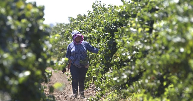 California lawmakers revive farmworker overtime bill