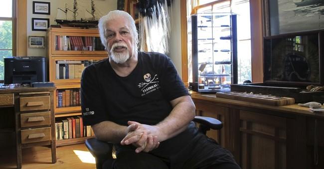 Sea Shepherd Australia says will continue South Ocean action