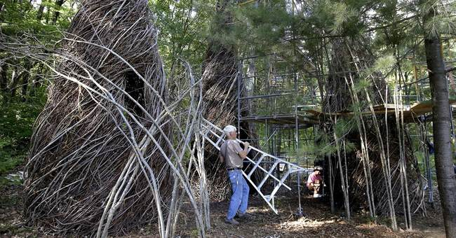 Branching out: Stick sculptor gains global following