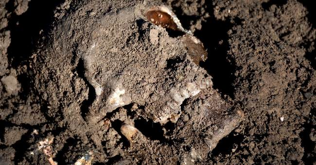 IS buried thousands in 72 mass graves, AP finds
