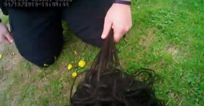 Iowa officer disciplined after yanking suspect's dreadlocks