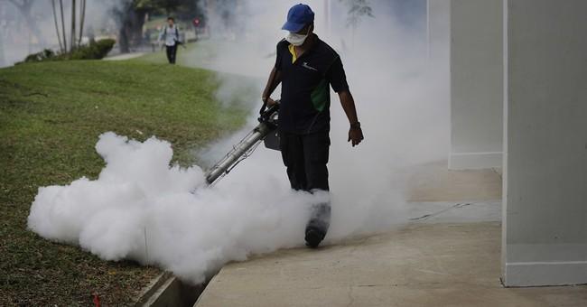 Where's Zika going next? Maybe China, India, or Nigeria