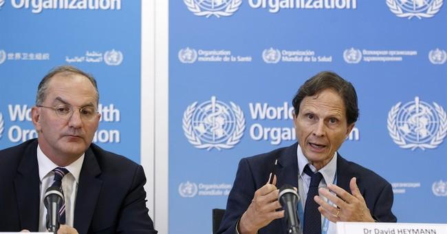 UN: Zika remains global emergency, virus still spreading