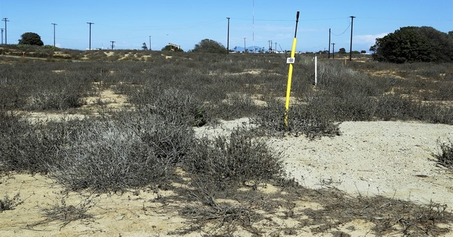 Debate peaks over vast coastal Southern California oil land