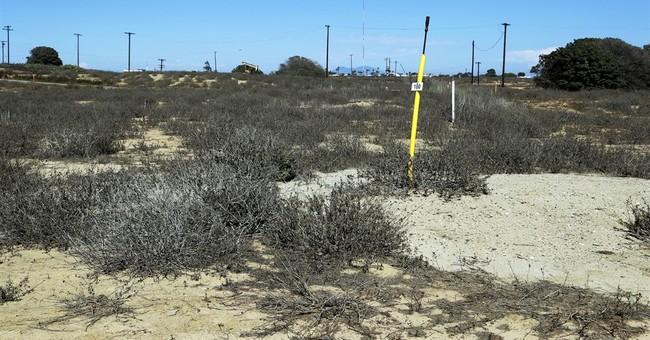 Debate peaks over vast coastal Southern California oil land