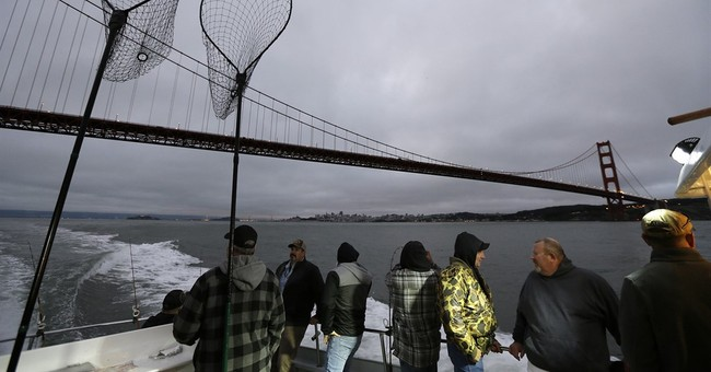 California's native salmon struggling in 5th year of drought
