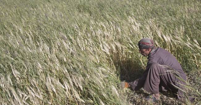 Peace but extreme poverty in isolated region of Afghanistan