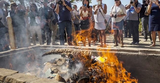 Zoo burns $1M in rhino items in 1st US bonfire of its kind