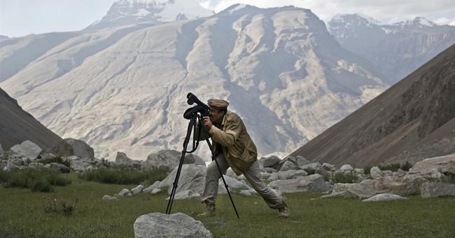 Snow leopards' return brings hope to remote Afghan region