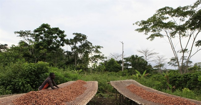 Young chocolate entrepreneurs emerge in world's cocoa leader