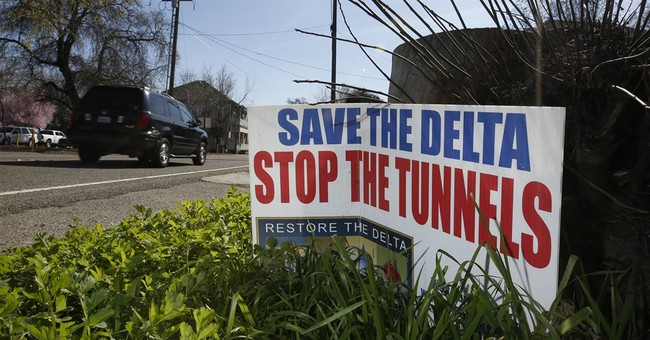 California water tunnels would need US funding, analyst says