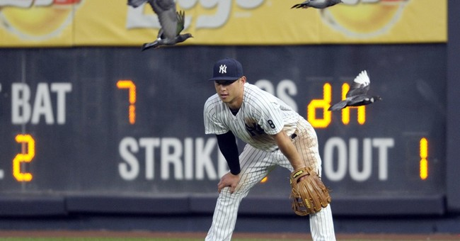 Pigeon Power: Birds swoop into stadium, Yankees fly high