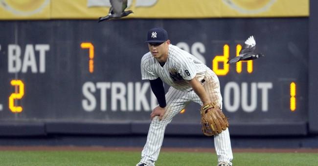 Pigeon Power: Birds swoop into stadium, Yankees fly high