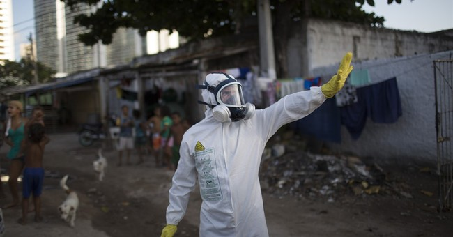 Scientists: More research needed into Zika-microcephaly link