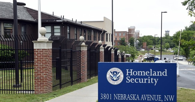 More than 800 immigrants mistakenly granted citizenship