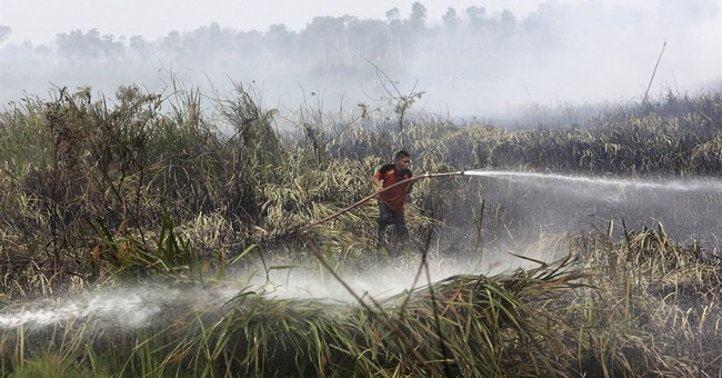 Study estimates 100,000 deaths from Indonesia haze