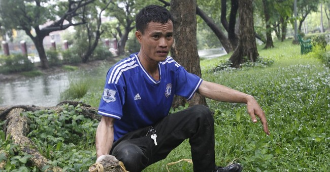Bangkok starts to clear lizards from popular park
