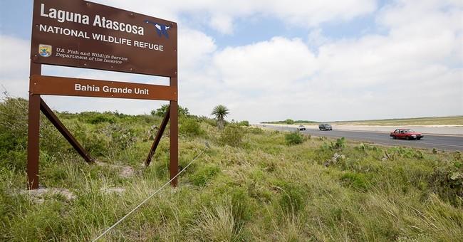 Report: Staff shortages hamper US wildlife refuges