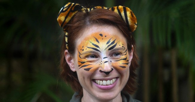 Report: Zookeeper screamed for help before tiger attack