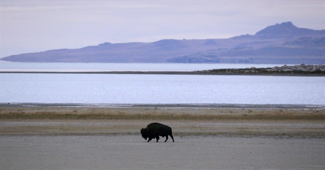 Beached boats, pink water as drought saps Great Salt Lake