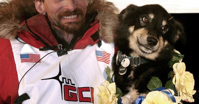 4-time Iditarod champ Lance Mackey out of 2017 race