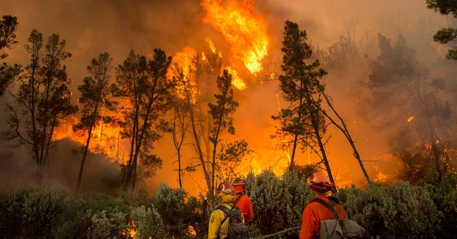 California wildfire destroys 8 homes, injures firefighter