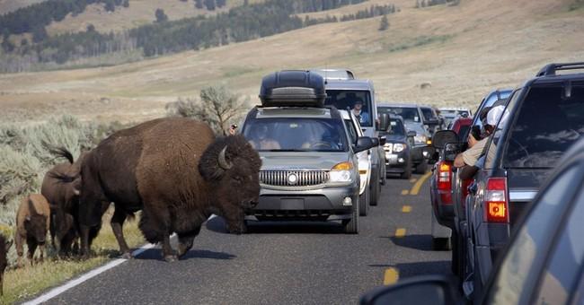 Correction: Yellowstone-Ringing Phones story