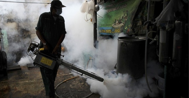 Thailand confirms SE Asia's first Zika-linked birth defects