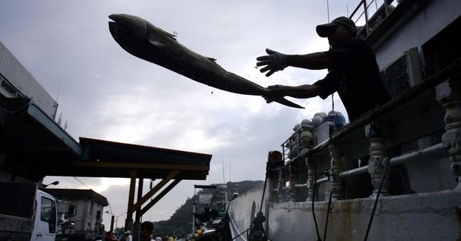 Taiwan seeks to improve conditions in fishing fleet