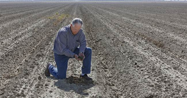 California water board fears water-saving has been abandoned