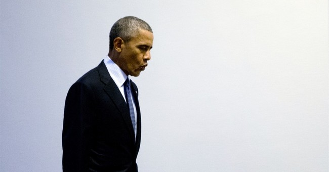 Obama promises party faithful: 'Democrats will win'