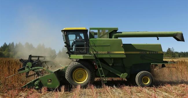 US farmers make foray into quinoa as demand for grain grows