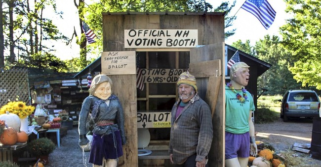 Down the toilet: Farm stand turns outhouse into voting booth