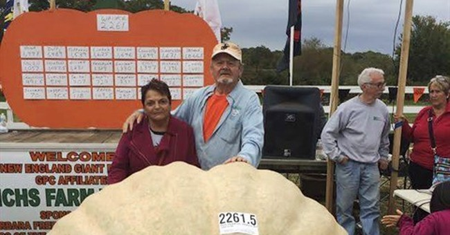 Dad squashes son's giant pumpkin record with 2,261-pounder