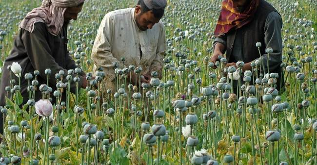 As Helmand risks falling to the Taliban, Afghans blame graft