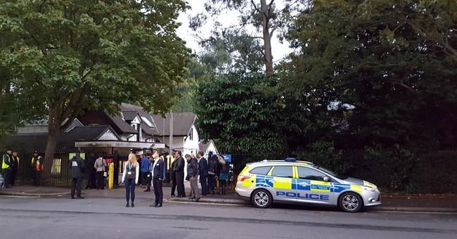 London Zoo: Escaped gorilla back in enclosure; no one hurt