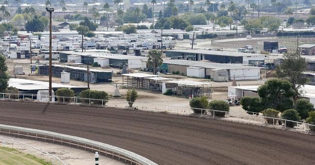 Herpes outbreak puts Phoenix racetrack under quarantine