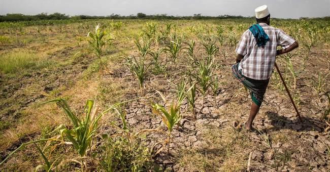 US pledges $97M to combat Ethiopia's drought
