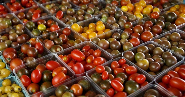 Why tomatoes lose flavor in fridge: their genes chill out