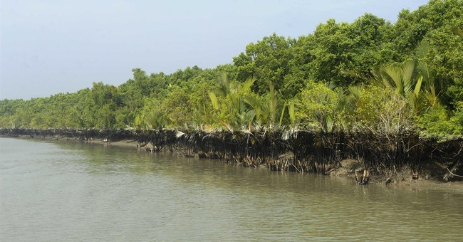 UNESCO urges halt to plan for Bangladesh coal plant in delta