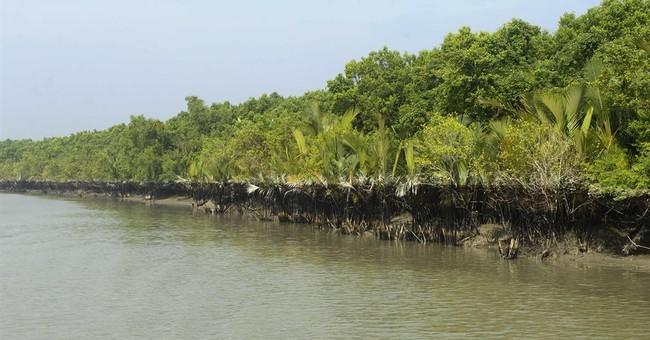 UNESCO urges halt to plan for Bangladesh coal plant in delta