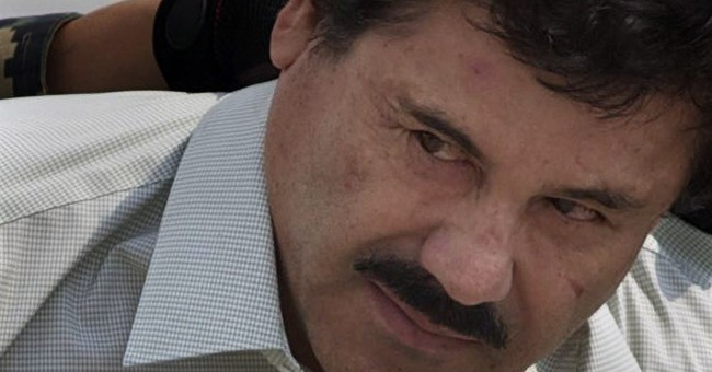 Mexican judge denies El Chapo's appeals against extradition