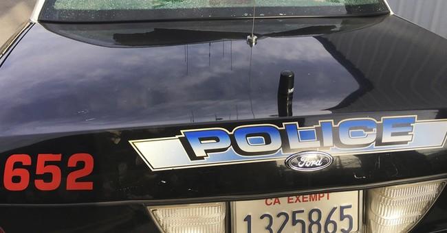 Shots hit California police car, woman on ride-along hurt