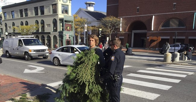 Man says tree stunt that blocked traffic was performance art