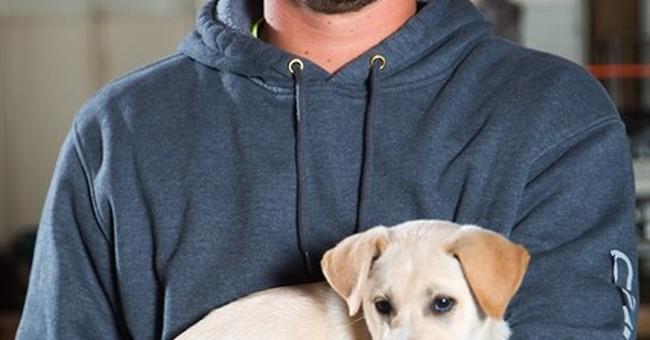 Michigan men adopt stray dog, puppies at bachelor party