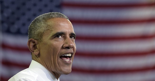 Boosting Clinton, Obama aims to build up Democratic Party