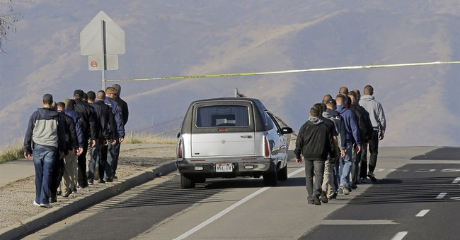 Utah police officer struck, killed during vehicle pursuit