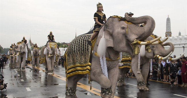 White elephants, mahouts pay respects to late Thai king